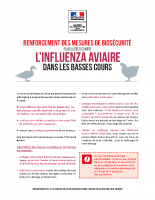 Flyer basses cours